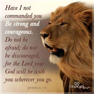 Courageous Christianity Bible Study